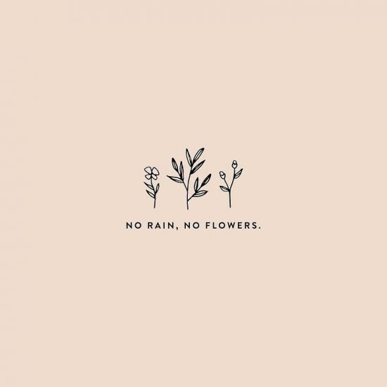 No rain, no flowers with floral graphic illustration