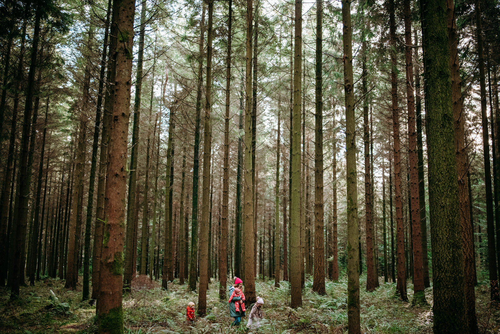 Woman walking through the woods with her daughters in Heaven's Gate Longleat